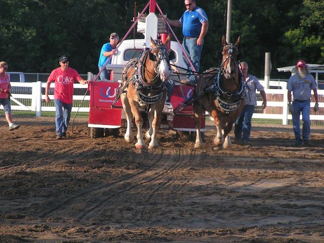FAIR PHOTOS: REAL HORSEPOWER