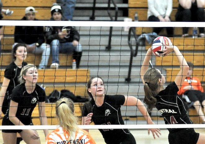 VOLLEYBALL: Several Falcons named to All-Area team