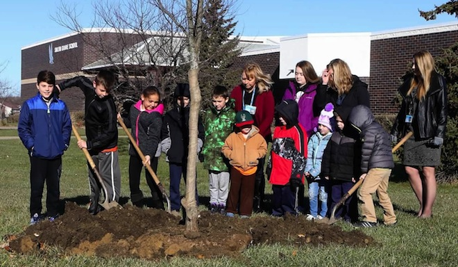 Trees to enliven Salem School grounds