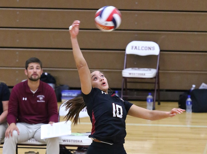 ALL AREA VOLLEYBALL: Falcons boast two first-team reps