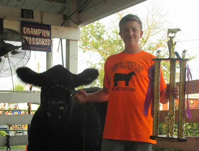 Willing Workers' Bacle raises grand champion steer