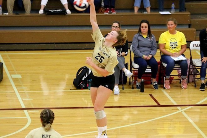 GIRLS VOLLEYBALL: Westosha girls sweep Wilmot