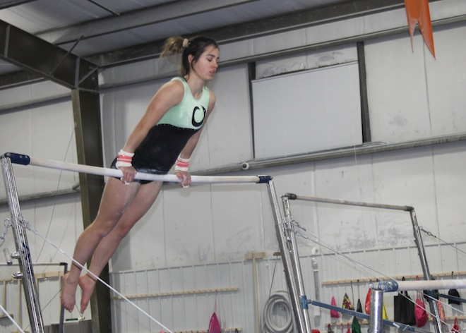 GIRLS GYMNASTICS PREVIEW: Westosha representatives bring experience to Kenosha Combined