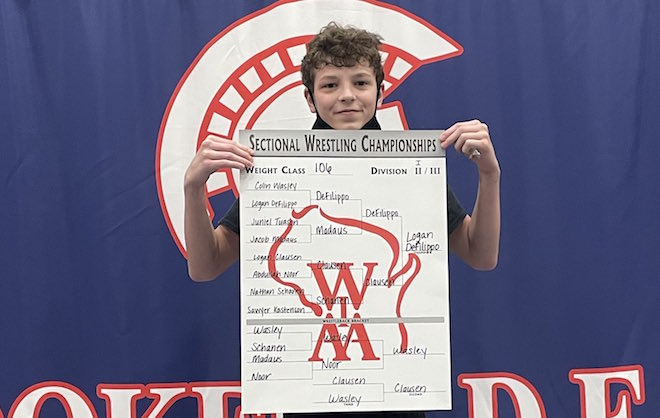 WIAA Wrestling: Panthers DeFilippo punches ticket to state wrestling meet